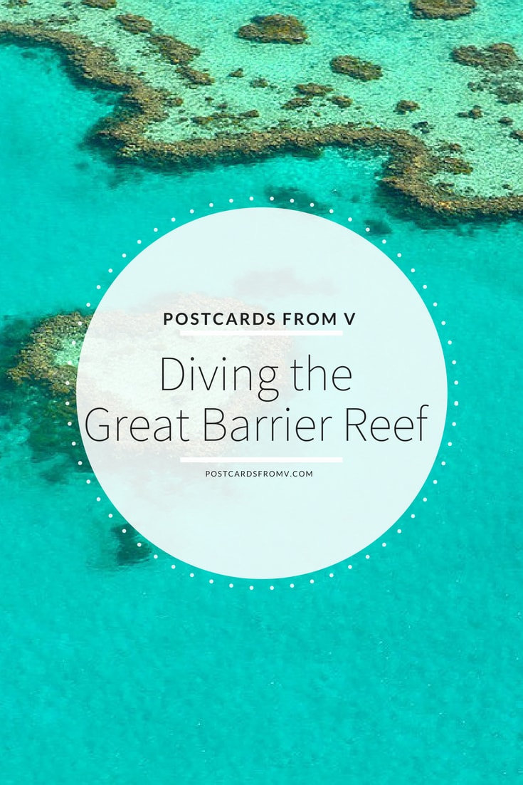 pinterest, diving the great barrier reef, postcards from v