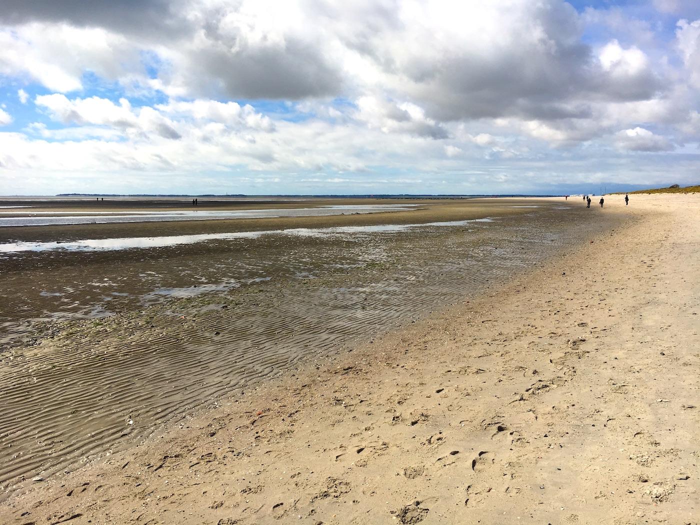 North Frisian Island, Mudflat
