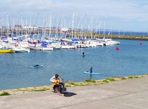 Perfect Day Trips from Dublin, Ireland, Howth, Harbor