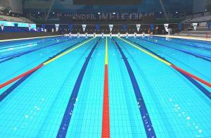 Swimming, Budapest, World Masters Championships