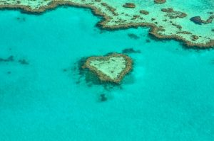 Great Barrier Reef, Diving