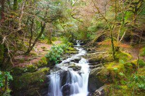Killarney National Park, Waterfall