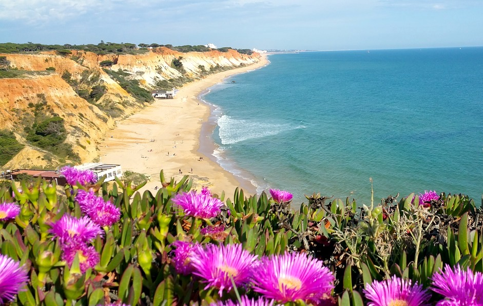 Algarve, Portugal, Beach, Flowers