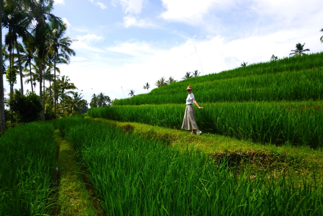 2-week Bali itinerary